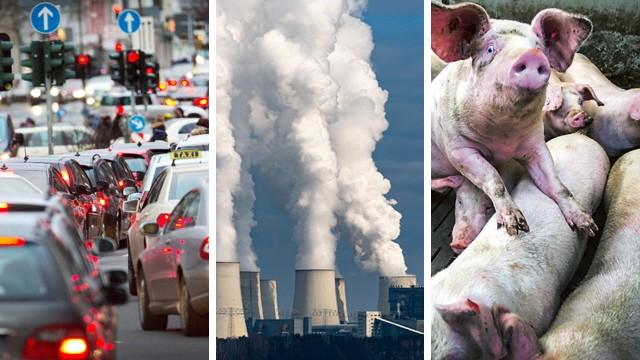 Klimapaket Bundesregierung