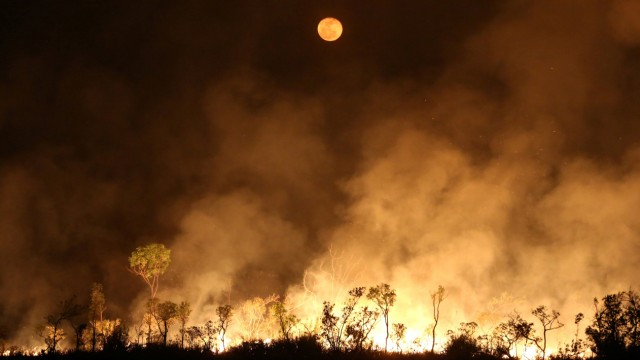 A fire is seen on a tract of Amazon jungle at Tenharim Marmelos Indigenous Land