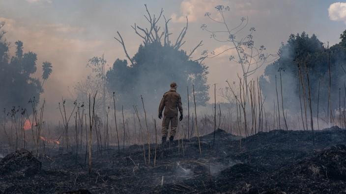 Freihandel: Brandrodung am Amazonas: Der Raubbau Brasiliens im Regenwald hat die Handelspartner in Europa verärgert. Die Frage ist nur, ob sie genug Druck aufbauen.