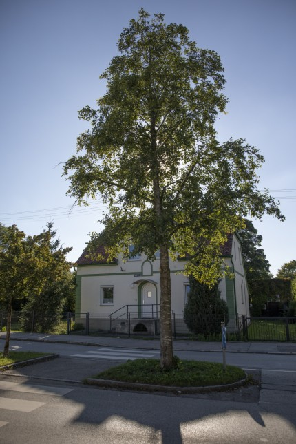 Schulstraße 15 in Maisach