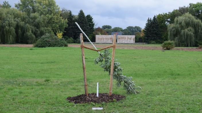 Gedenkbaum NSU-Opfer Simsek