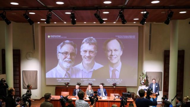 Medizin-Nobelpreis 2019