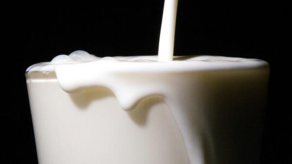 """Warenrückruf für ´Frische Fettarme Milch 1,5 Prozent Fett"""""""