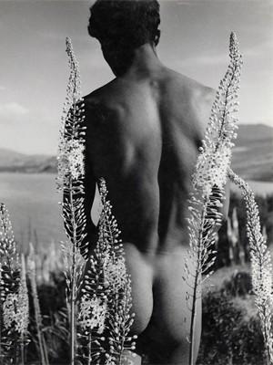 Herbert List, Araber mit Steppenkerzen, 1935