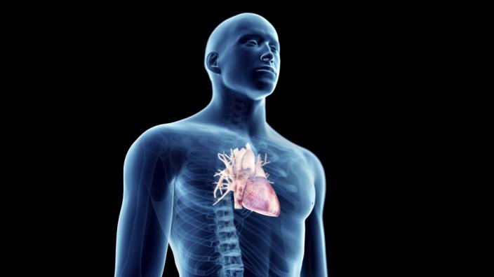 Illustration of a man s heart Illustration of a man s heart PUBLICATIONxINxGERxSUIxHUNxONLY SCIEPRO