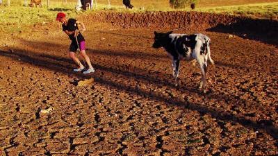Katastrophale Veränderungen: Folgen der Erderwärmung: Schon jetzt leiden manche Länder unter Perioden extremer Trockenheit wie Anfang Mai Brasilien.