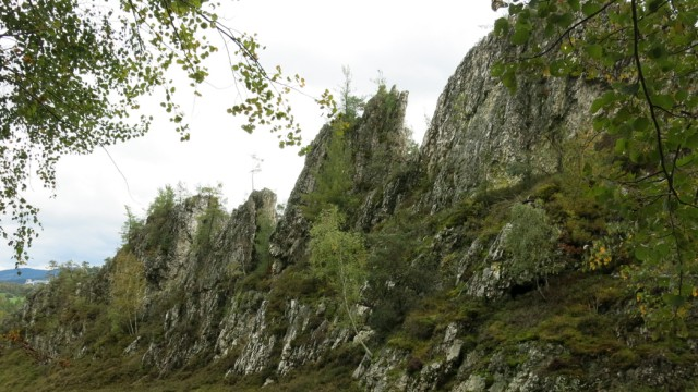 Bayerischer Wald Glas