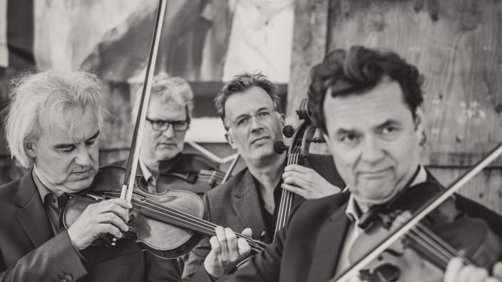 "Modern String Quartet â€"" Pressefoto MSQ 3"