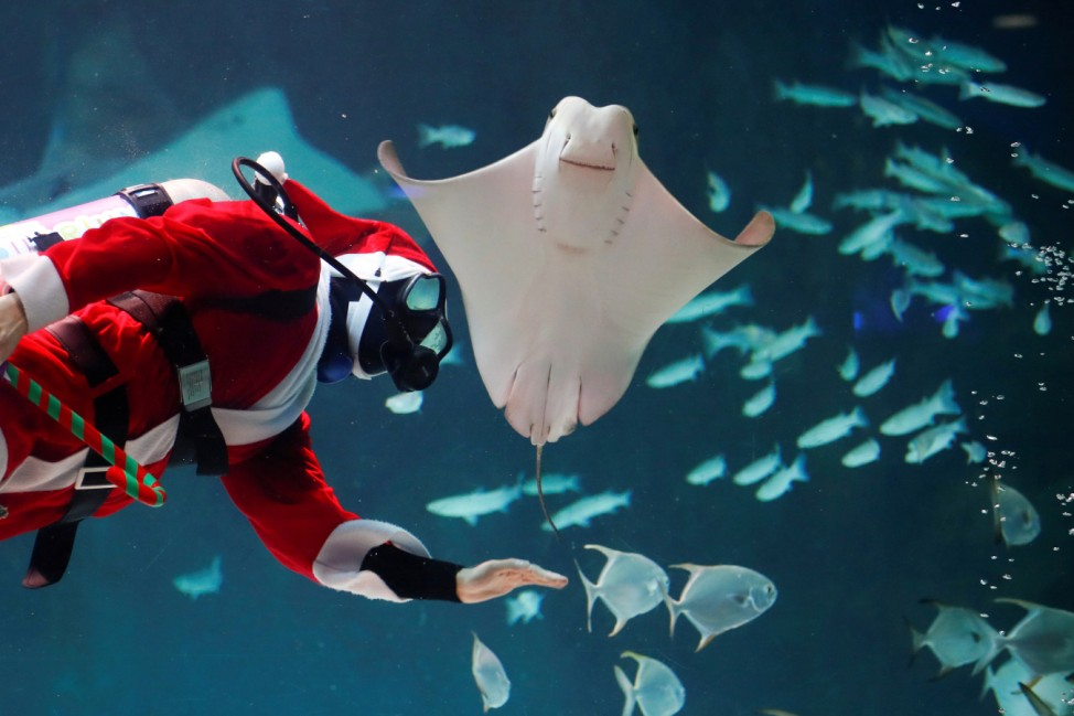 A diver dressed as Santa Claus performs during a promotional event for Christmas in Seoul