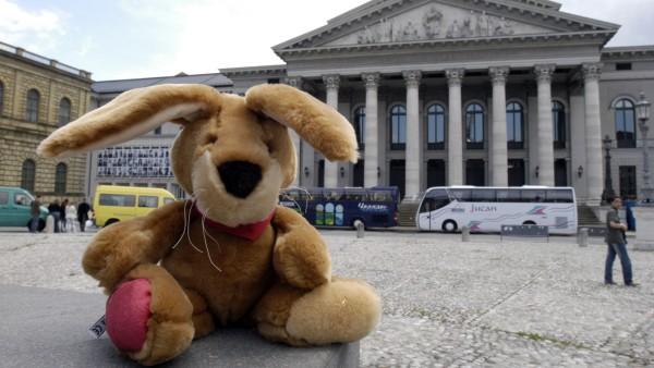 Teddy in Munich, 2005