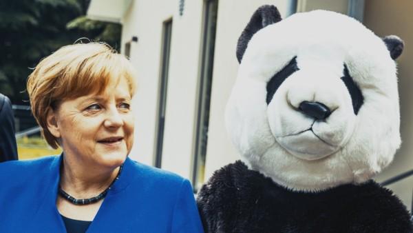 Ein Panda für die Kanzlerin