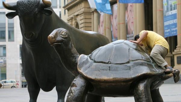 Besuch von der Schildkröte