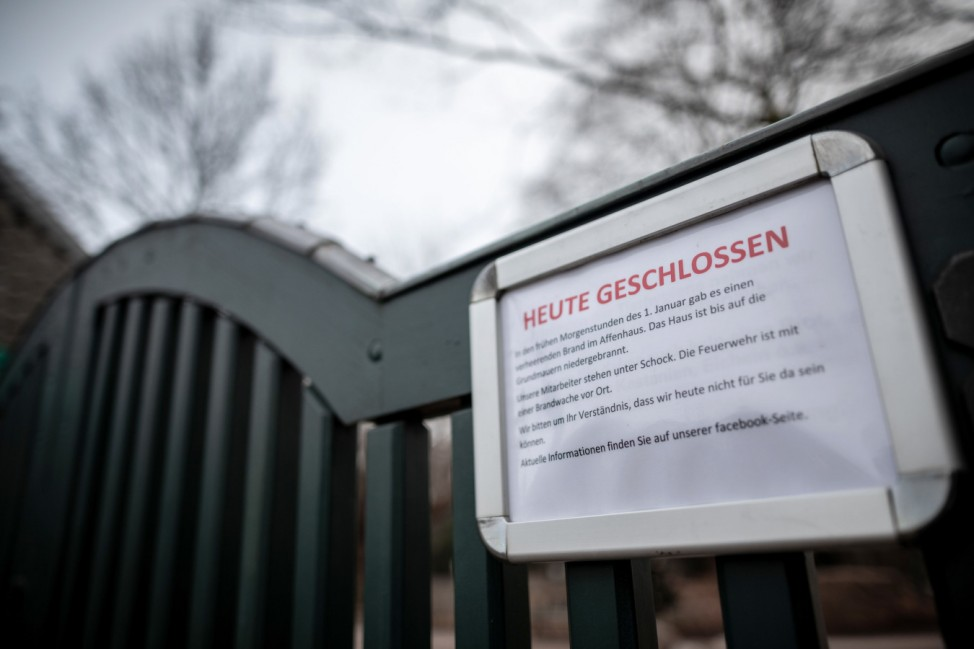 Nach dem Brand im Krefelder Zoo