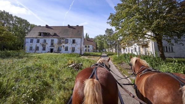 Nach über 80 Jahren wird die Halbinsel Wustrow bei Rerik (Landkreis Rostock) für die Öffentlichkeit wieder zugänglich ge