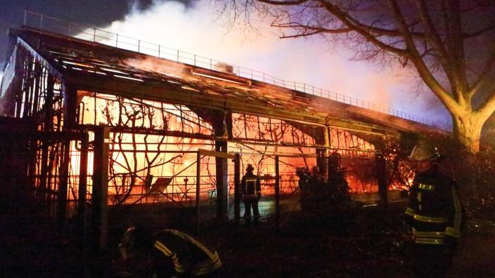 Brand im Krefelder Zoo