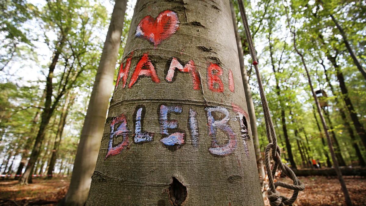 """Tagebau: """"Hambi"""" bleibt, Garzweiler II baggert weiter"""