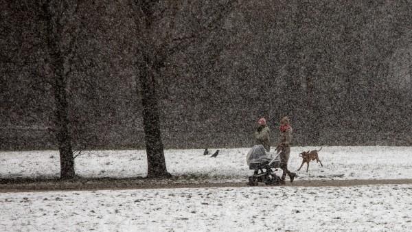 Schneefall an der Isar in München gegenüber der St. Maximilian Kirche.
