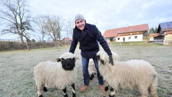 Breitbrunn: Perger Besitzer Josef Schernthaner