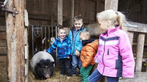 Kinderland - Bayern Gemeinschaft Tölzer Land