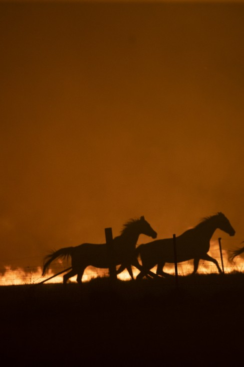***BESTPIX*** State Of Emergency Declared In ACT As Canberra Braces For Increased Bushfire Threat