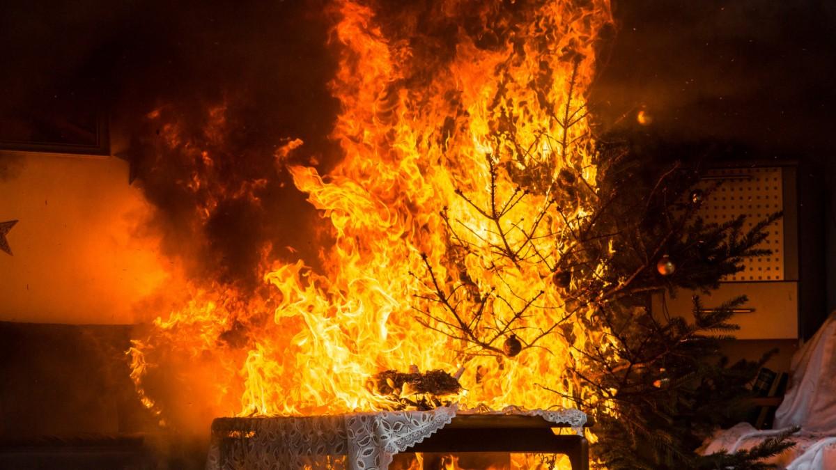 Brennende Bäume in der Nachweihnachtszeit