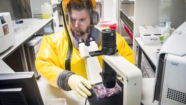 Coronavirus: Forscher in Deutschland auf der Suche nach einem Impfstoff
