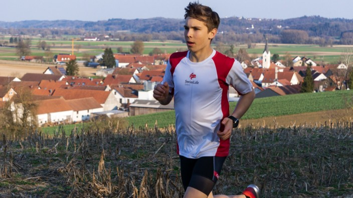 Niklas Ludwig, Ironman