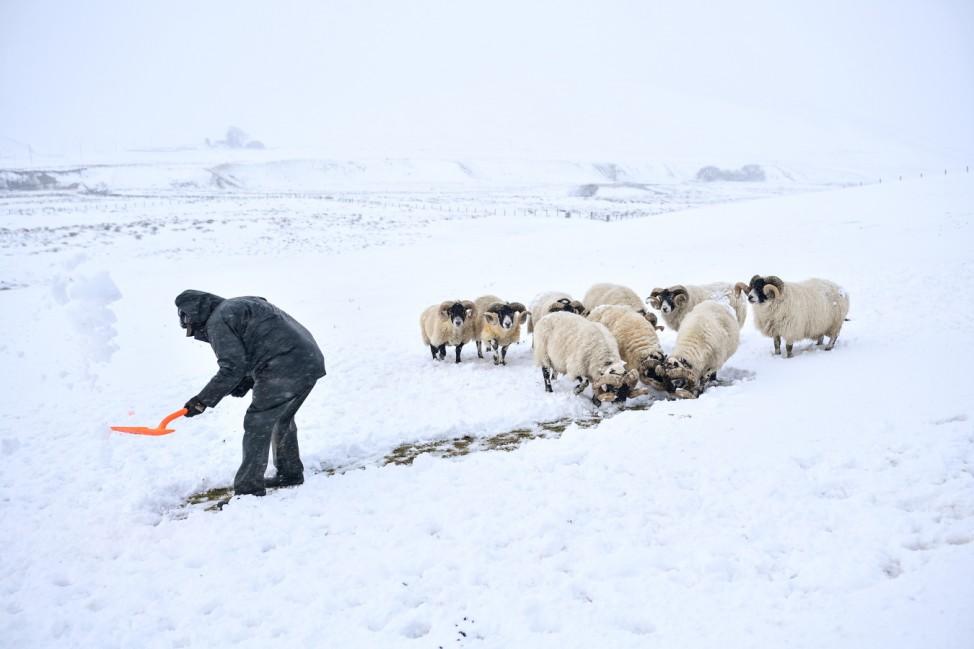 Winter Snow Falls Across Scotland