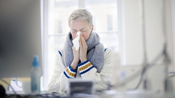 Gestelltes Symbolfoto zum Thema krank am Arbeitsplatz . Eine Frau sitzt sich an ihrem Schreibtisch und putzt sich die Na