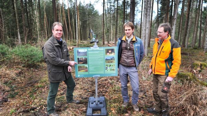 Andechs: Kerschlacher Forst Moorrenaturierung