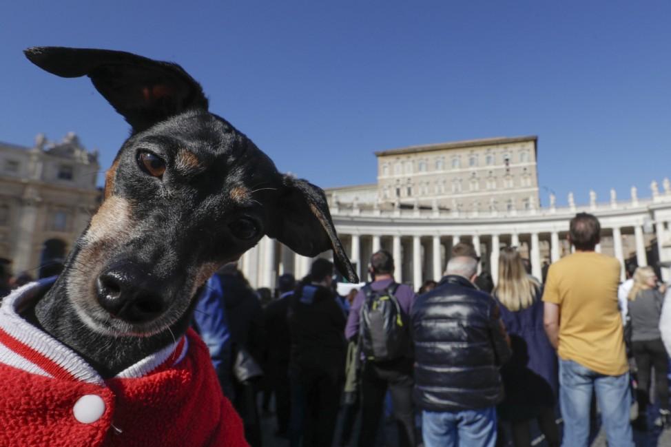 Alltag im Vatikan
