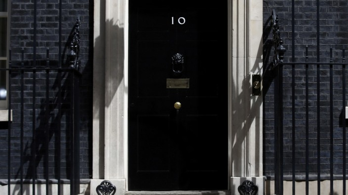 Larry the Downing Street cat walks past the front door of number 10, in central London, Britain