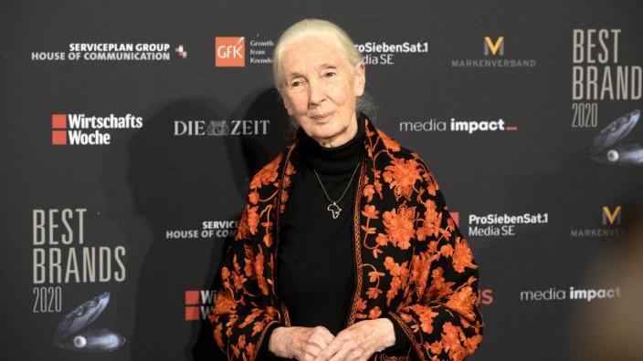 """SZenario: Jane Goodall bei der Verleihung der """"Best Brand Awards"""". Sie erinnert daran, dass jeder jeden Tag den Unterschied für eine bessere Welt machen."""