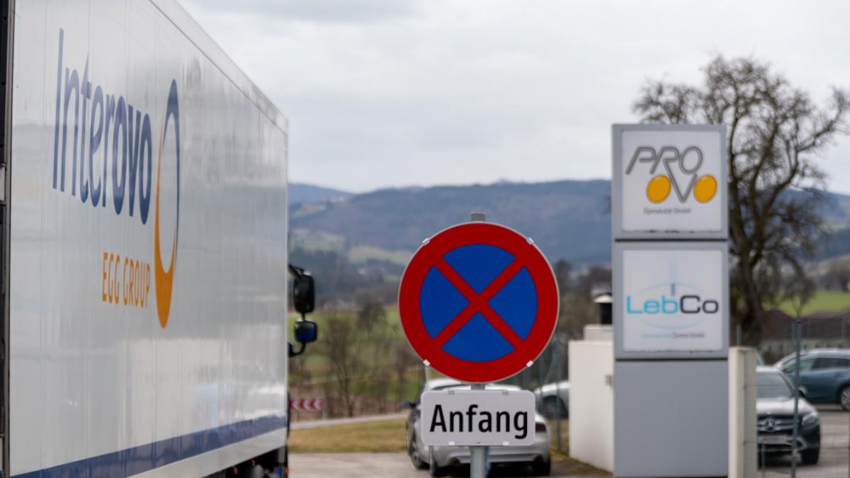 Österreich: Durchsuchungen bei Pro Ovo wegen Lebensmittelskandal