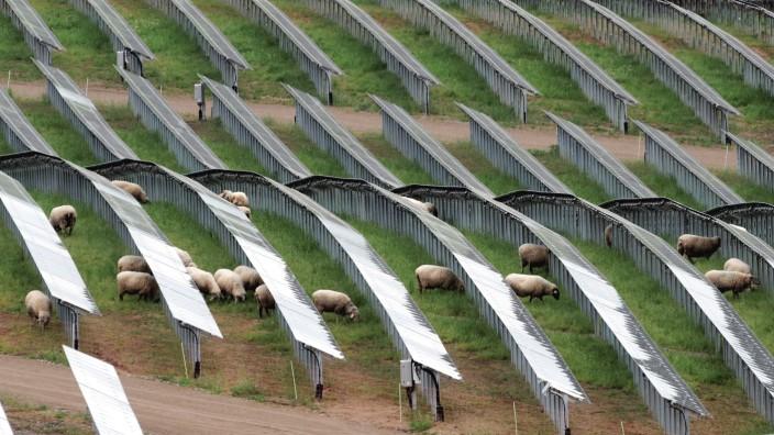 Solarkraftwerk in Föhren