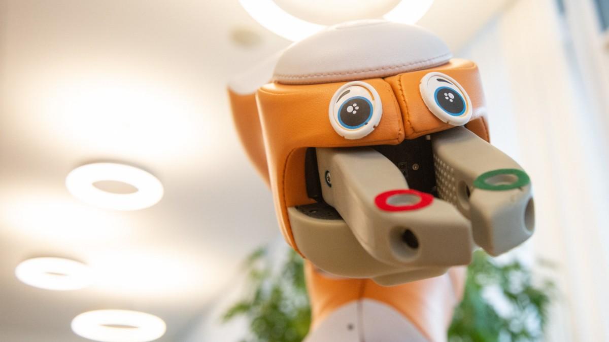 Digitalisierung: Übernehmen bald die Roboter?