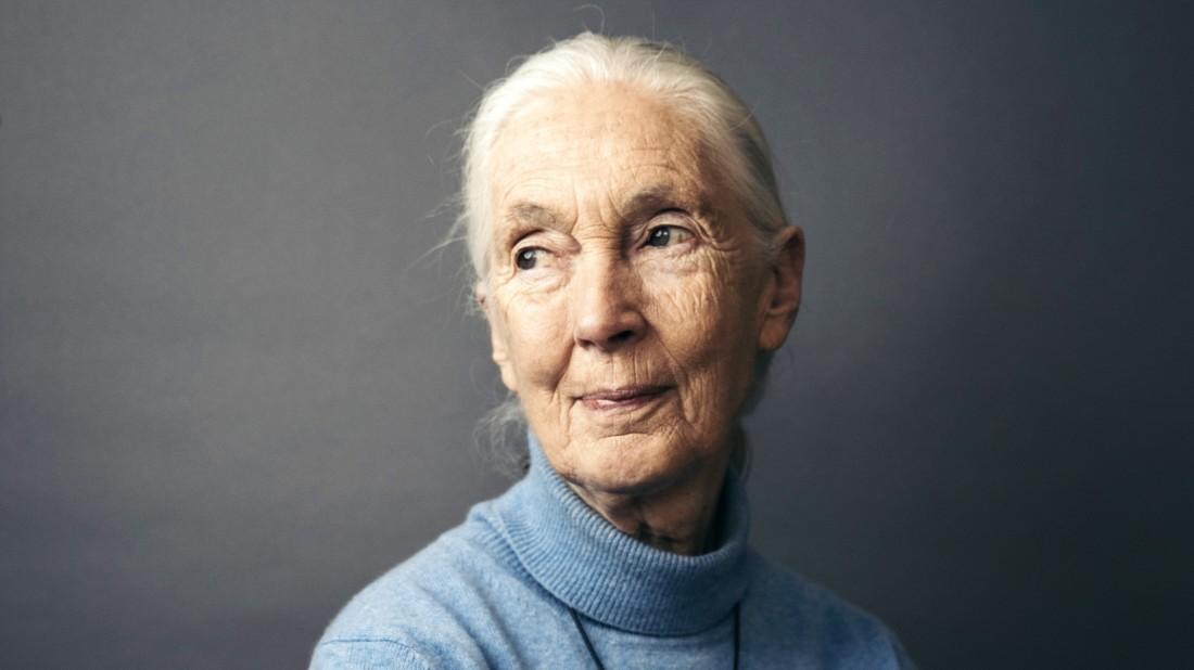 """Jane Goodall: """"Wir sollten kein Fleisch mehr essen"""""""