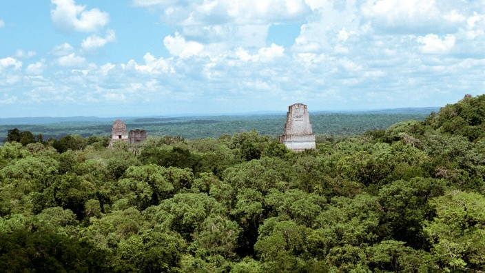 Blick auf die Tempel von Tikal, Guatemala, Tikal view onto the temples of Tikal, Guatemala, Tikal BLWS548352 Copyright:
