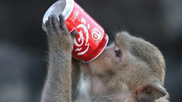 Tradtionelle Affen-Feier