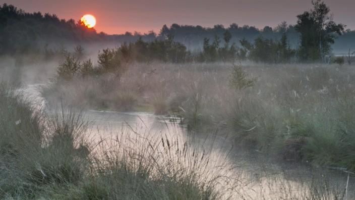 Bilder der Erde Sonnenaufgang im Moor Emsland Niedersachsen Deutschland Europa *** Sunrise in th