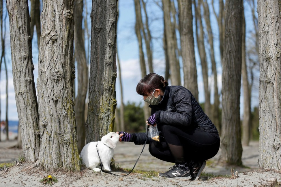 Eaton feeds her rabbit Walter while wearing a mask at Golden Gardens Park during the coronavirus disease (COVID-19) outbreak in Seattle