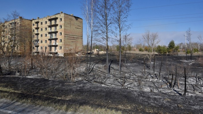 Burned trees are seen in the settlement of Poliske after a forest fire in the exclusion zone around the Chernobyl nuclear power plant