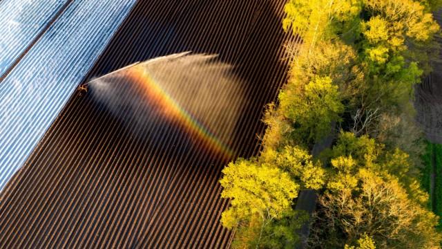 Bauern fürchten drittes Dürrejahr in Folge