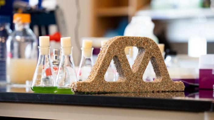 Beton aus Bakterien