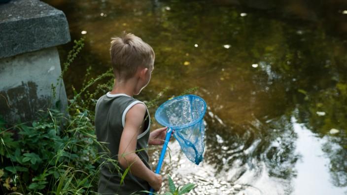 Pädagogik: Eine Stunde täglich draußen spielen ist für die Entwicklung des Kindes besonders gut.