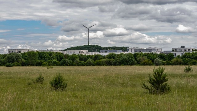 Naturschutzgebiet Fröttmaninger Heide, 2013