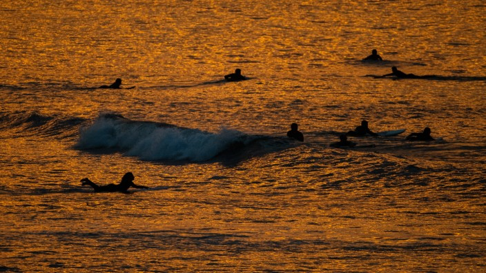 NSW RESTRICTIONS EASED, Swimmers and surfers in the sea as the sun rises at Bondi Beach, Sydney, Monday, June 1, 2020.