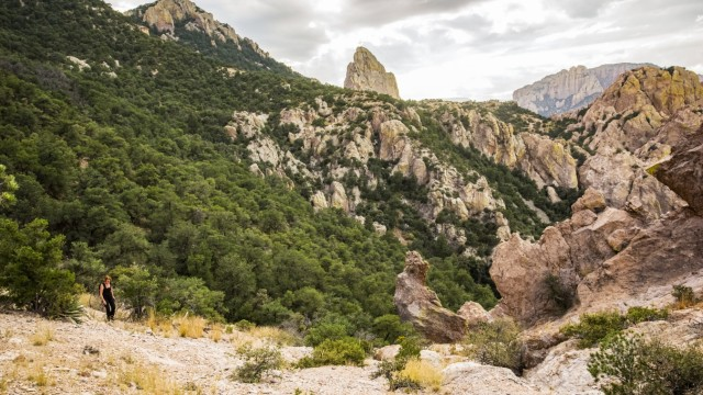 Woman hiking in the Chiricahua Mountains above Cave Creek Canyon near Portal; Arizona, United States of America PUBLICAT