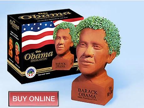 Barack Obama Das Geschäft mit der Vereidigung Screenshot www.chia.com