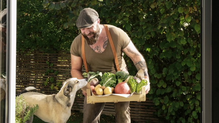 Mature man carrying crate with vegetables in his garden model released Symbolfoto property released
